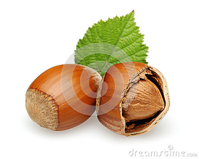 Hazelnuts and leaves