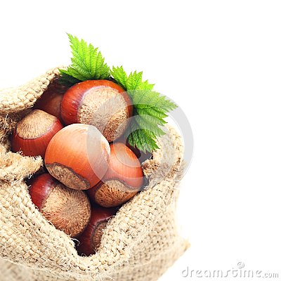 Hazelnuts in sack
