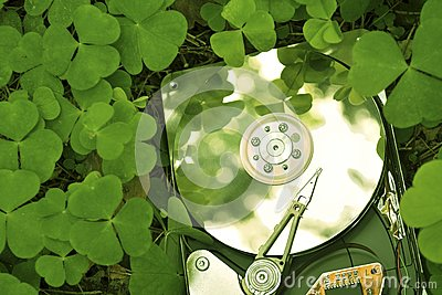 Hdd in grass