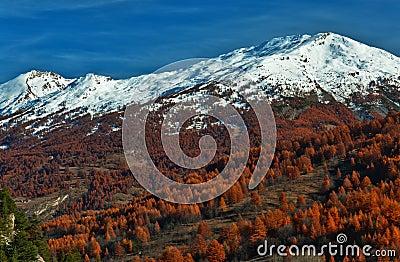 HDR alpine landscape
