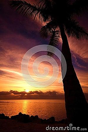HDR Beach Sunrise