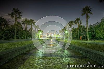HDR  night shot in Tokyo Japan