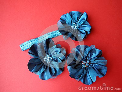 Head band and brooch
