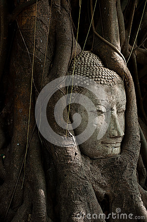Head of Buddha Sandstone