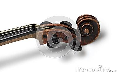 Head of classical violin