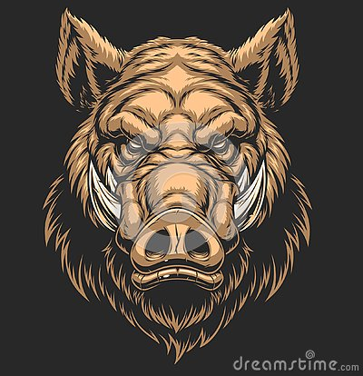Free Head Ferocious Boar Royalty Free Stock Photography - 127811677