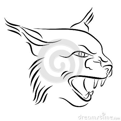 Free Head Of Angry Lynx Ink Line Art Stock Photography - 49596562