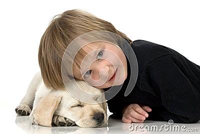 Head on puppy