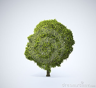 Head shaped tree