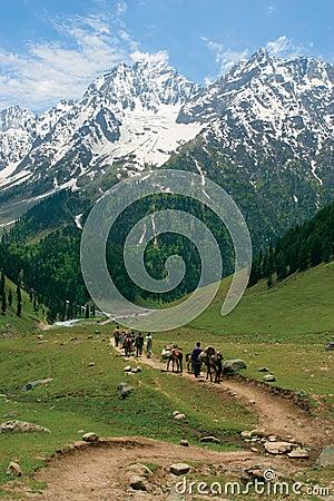 Heading towards the Himalayas Editorial Photography