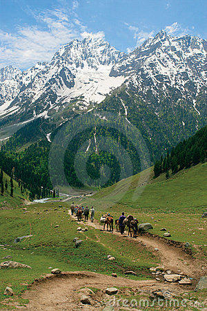 Free Heading Towards The Himalayas Royalty Free Stock Photography - 537937