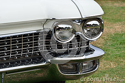 Headlight and radiator grill