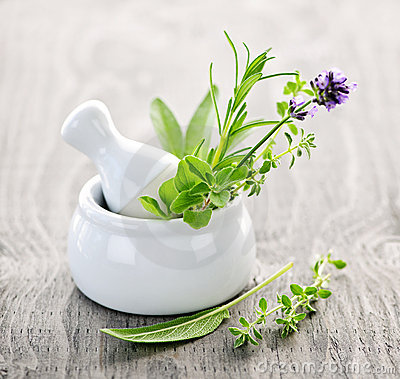 Free Healing Herbs In Mortar And Pestle Stock Photo - 15795070