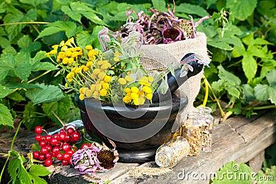 Healing herbs in mortar