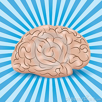 Healthy brain on a blue background with lines