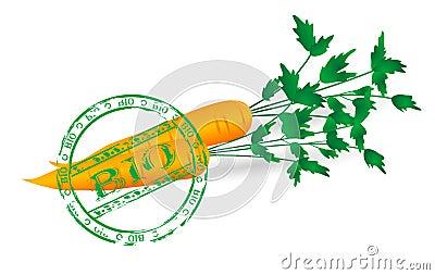 Healthy carrots