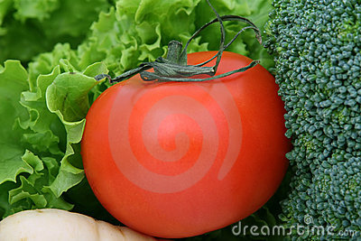 Healthy cherry tomato, lettuce and vegetables