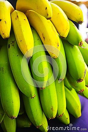 Free Healthy Food Bunch Of Banana Tropical Fruit Riping On Banana Tre Royalty Free Stock Image - 107530356