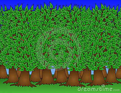 Healthy Forest Illustration