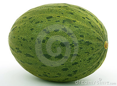 Healthy fruit melon