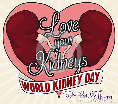 Healthy Kidneys and Greeting Message of Love and Renal Care, Vector Illustration Vector Illustration