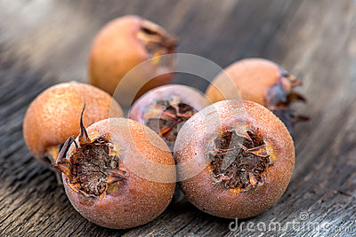 Healthy Medlars