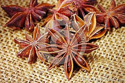 Heap of badyan seeds