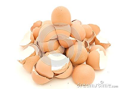 Heap of egg shell