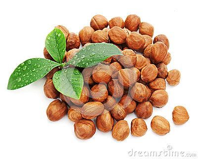 Heap of fresh shelled hazelnuts with green leaves isolated.