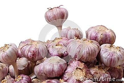 Heap of garlic