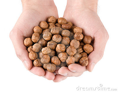 Heap of hazelnut