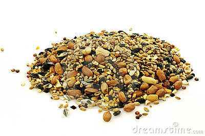 Heap of mixed bird feed