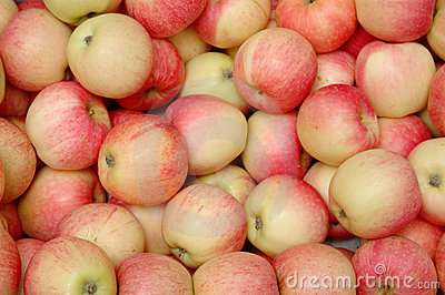 Heap of red apples