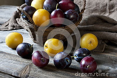 Heap of Ripe Sweet colorful Plums