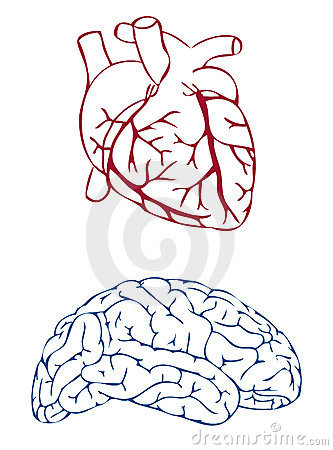Free Heart And Brain Royalty Free Stock Photo - 2032275