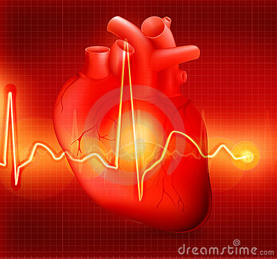 Free Heart Cardiogram Royalty Free Stock Photography - 20446297