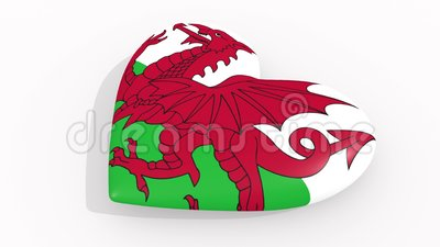 Heart in colors and symbols of Wales on white background, loop.