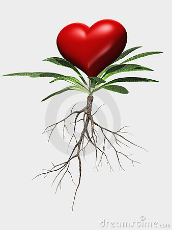 Heart Flower Metaphor Isolated