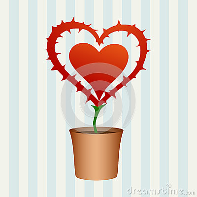 Heart flower with thorns