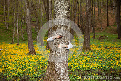 Heart hand on tree in forest