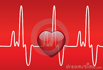 Heart and heartbeat