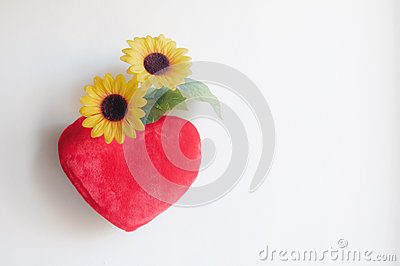 Heart pillow and daisies