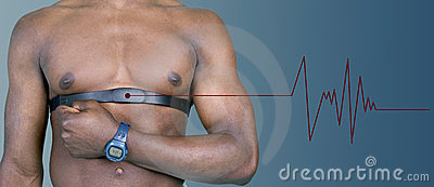 Heart rate monitor with pulse