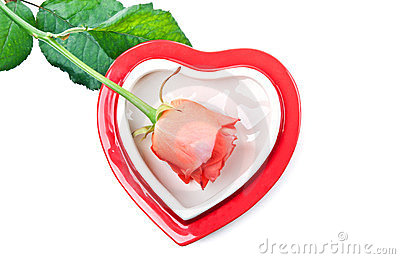 Heart and red rose