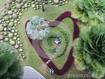 Heart shape Garden