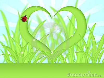Heart Shape Grass with Dew Drops