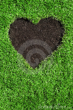 Heart shape in the lawn