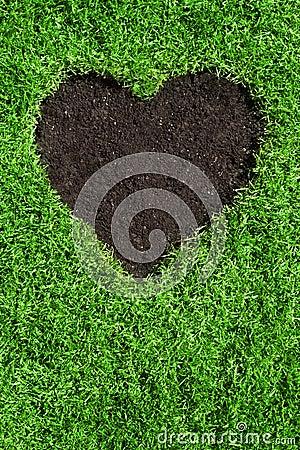 Heart shape in the lawn