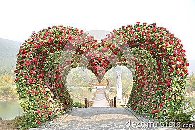 Heart shape love door