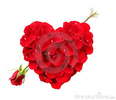 Heart Shape Made Of Rose Petals With Long Stemmed